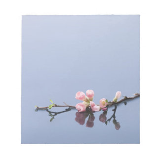 Cherry blossoms on water notepad