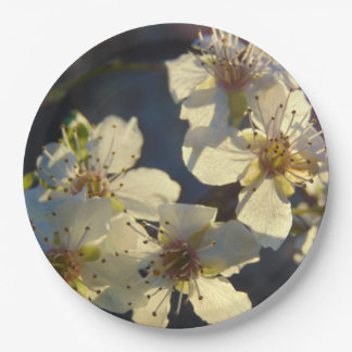 Cherry Blossoms Paper Plate