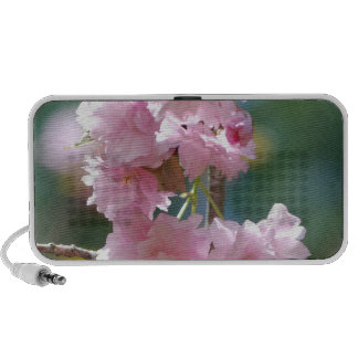 Cherry Blossoms Portable Speakers