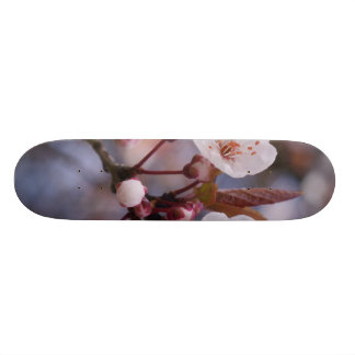 CHERRY BLOSSOMS SKATE BOARD DECK