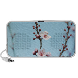 Cherry Blossoms Sky iPhone Speaker