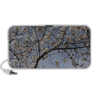 Cherry Blossoms Mini Speakers