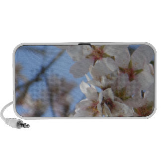 Cherry Blossoms Laptop Speaker