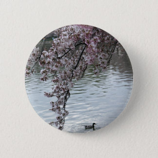 Cherry Blossoms Washington DC 6 Cm Round Badge