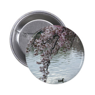 Cherry Blossoms Washington DC 6 Cm Round Badge
