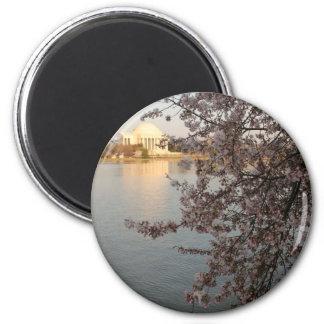 Cherry Blossoms Washington DC 6 Cm Round Magnet