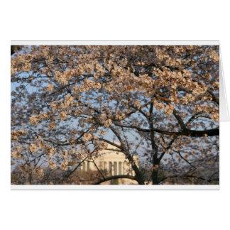 Cherry Blossoms Washington DC Greeting Card