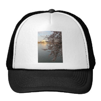 Cherry Blossoms Washington DC Mesh Hat