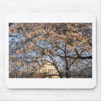 Cherry Blossoms Washington DC Mouse Mat