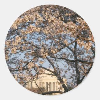 Cherry Blossoms Washington DC Round Stickers