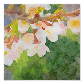 Cherry Blossoms Watercolor Sakura Flowers Spring Poster