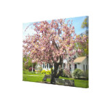 Cherry Blossoms Wrapped Canvas Canvas Prints