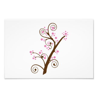 Cherry branch illustration photographic print