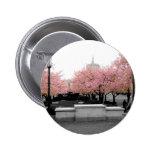 Cherry Capitol Pinback Button