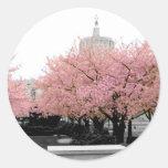 Cherry Capitol Sticker