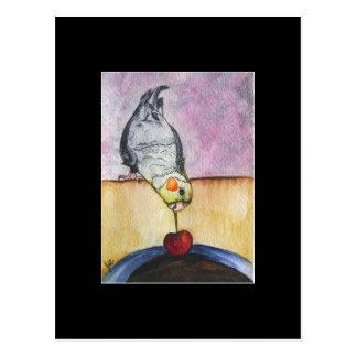 Cherry Dip (cockatiel) ACEO Art Trading Card Postcard