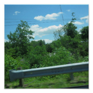 CHERRY Hill NewJersey USA Nature Green Sky Tree 99 Poster