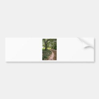 Cherry Lane Bumper Sticker