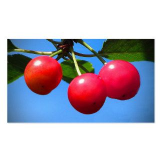Cherry Orchard Pack Of Standard Business Cards