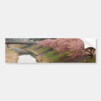 Cherry tree blossoms in Japan Car Bumper Sticker