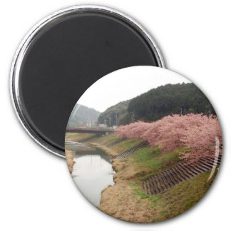 Cherry tree blossoms in Japan Refrigerator Magnets