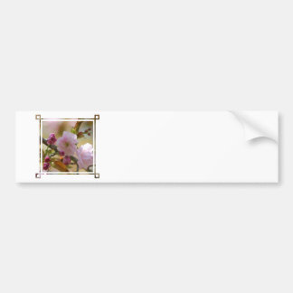 Cherry Tree Business Cards Bumper Stickers