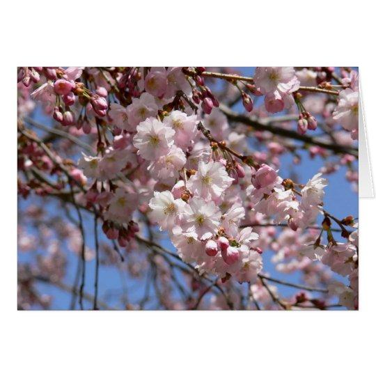 Cherry Tree Card