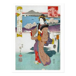 Cherry Tree Sumida River Bank Postcard