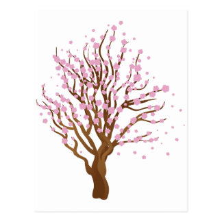Cherry with blossom postcard