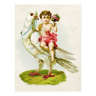 Cherub with Roses Riding a Dove Postcard
