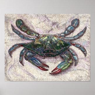 Chesapeake Bay Blue Crab Poster