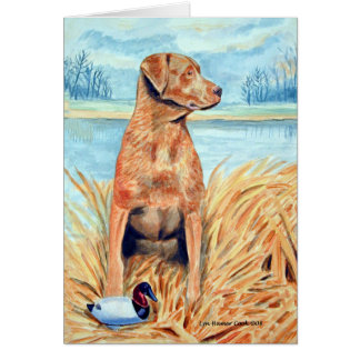 Chesapeake Bay Retriever Cards