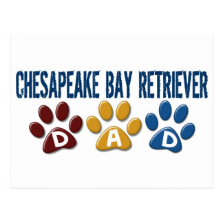 CHESAPEAKE BAY RETRIEVER Dad Paw Print 1 Postcard