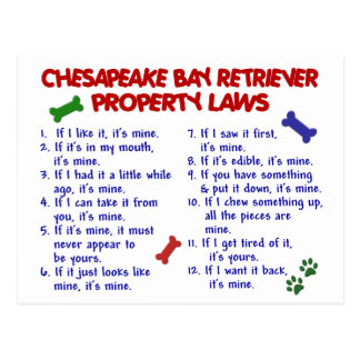 CHESAPEAKE BAY RETRIEVER Property Laws 2 Postcard