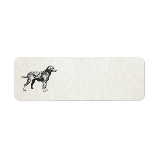 chesapeake bay retriever return address label
