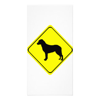 Chesapeake Bay Retriever Silhouette Crossing Sign Personalised Photo Card