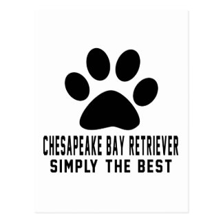 Chesapeake Bay Retriever Simply the best Postcard