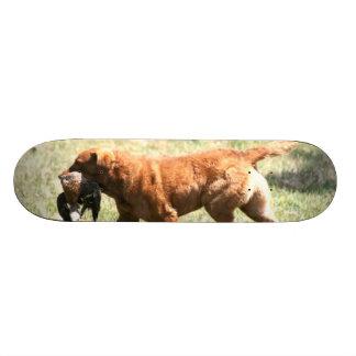 Chesapeake Bay Retriever Skate Boards