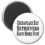 Chesapeake Bay Retrievers Have More Fun! Magnets