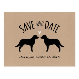 Chesapeake Bay Retrievers Wedding Save the Date Postcard