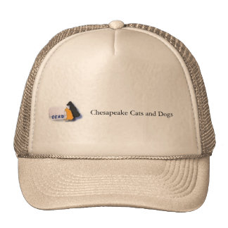 Chesapeake Cats and Dogs hat Hat
