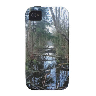 Cheshire Wetlands Case For The iPhone 4