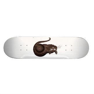 Chesire Cat Skateboard Decks