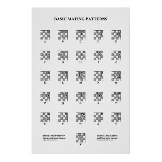 Chess - Basic Mating Patterns Poster