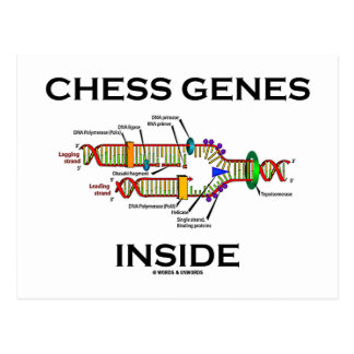 Chess Genes Inside (DNA Replication) Postcard