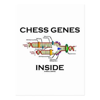 Chess Genes Inside (DNA Replication) Postcard