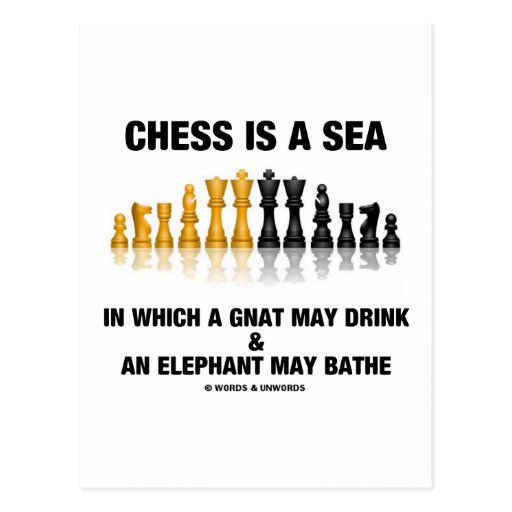 Chess Is A Sea In Which Gnat May Drink Elephant Post Card