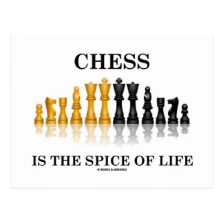 Chess Is The Spice Of Life (Reflective Chess Set) Postcard