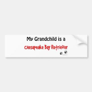 Chessie Grandchild Bumper Sticker