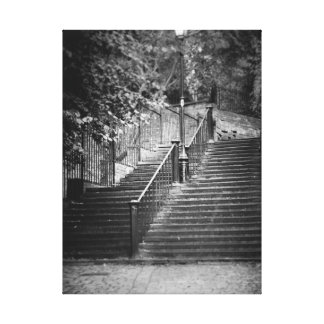 Chester Steps Canvas Print